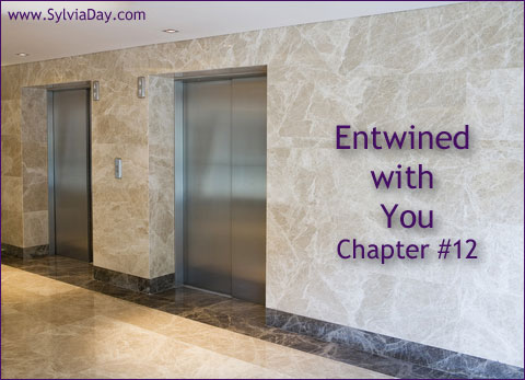 Entwined with You - Chapter Twelve